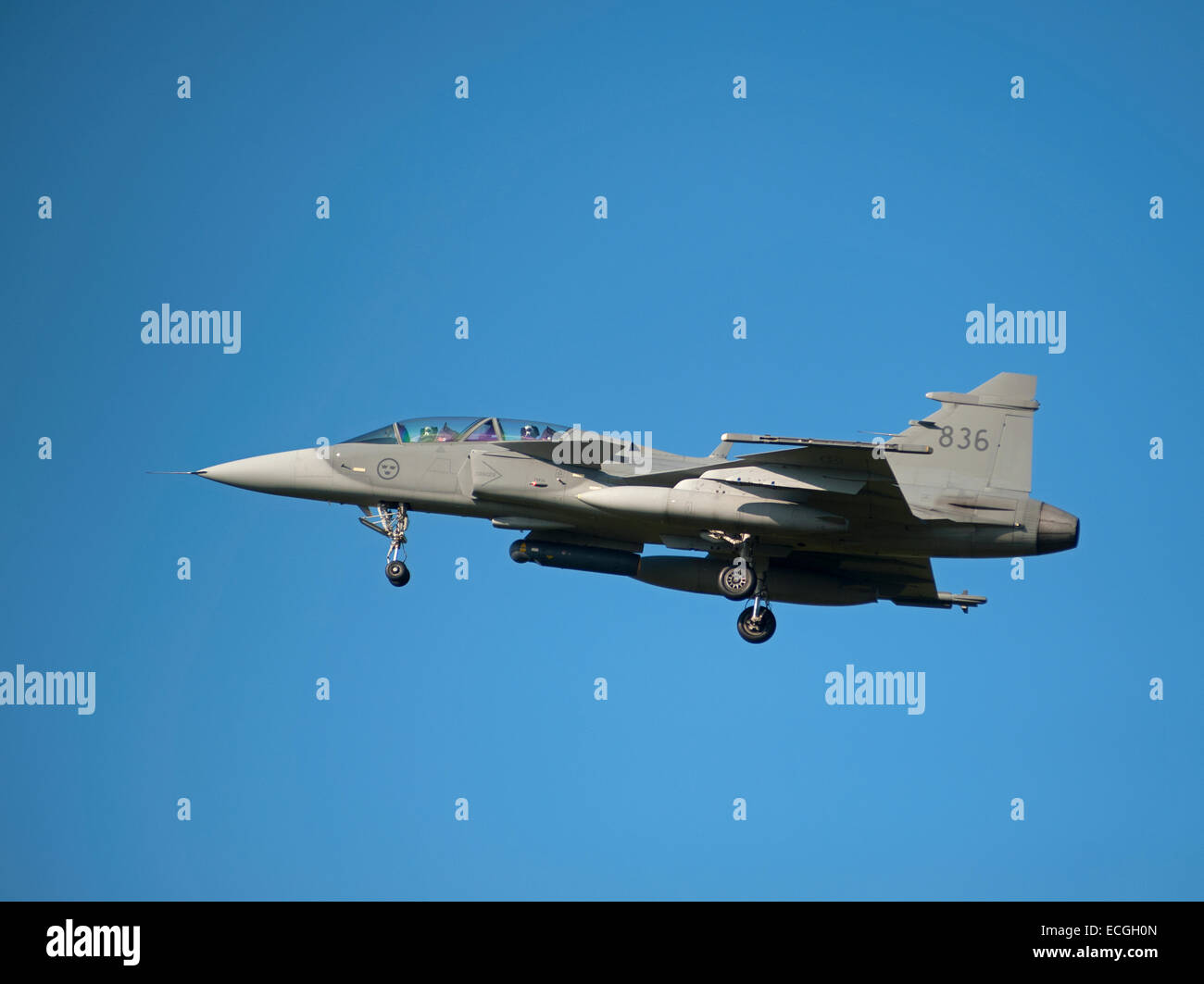 Swedish Saab Gripen Aircraft Tail Fin Serial 836 approaching RAF Lossiemouth.  SCO 9360. - Stock Image