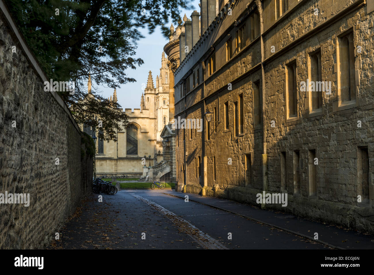 Looking down Brasenose Lane to Radcliffe Square and All Souls College with Brasenose College (right) and Exeter - Stock Image