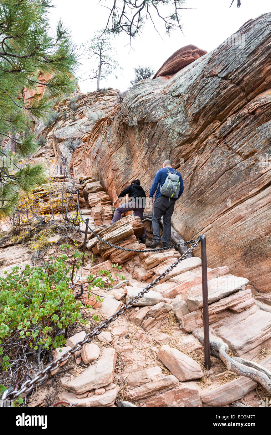 Zion National Park Utah - November 13 : hikers on a narrow stretch of the Angels Landing trail in Zion national - Stock Image