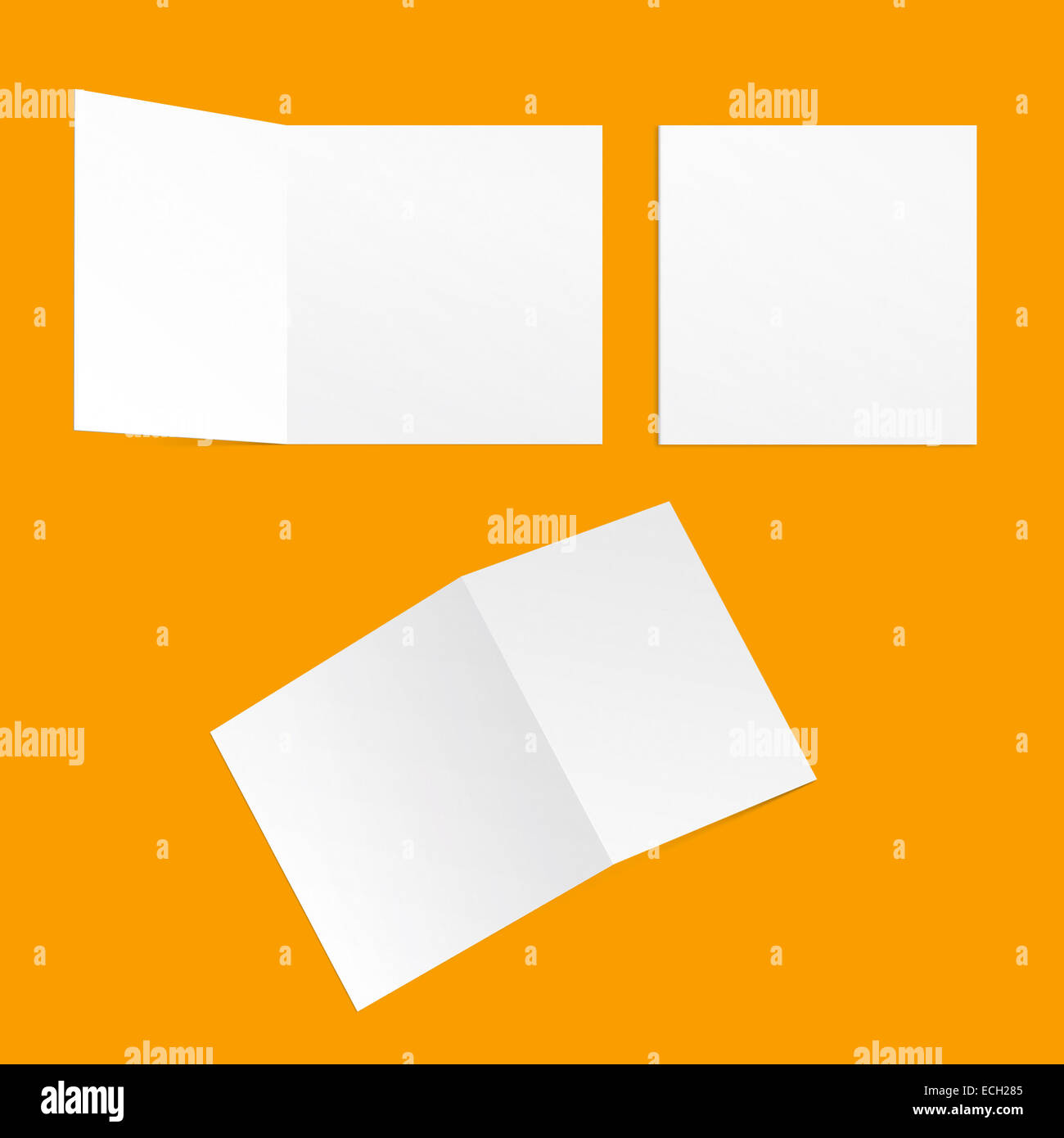 Template Square Postcards On A Yellow Background Back And