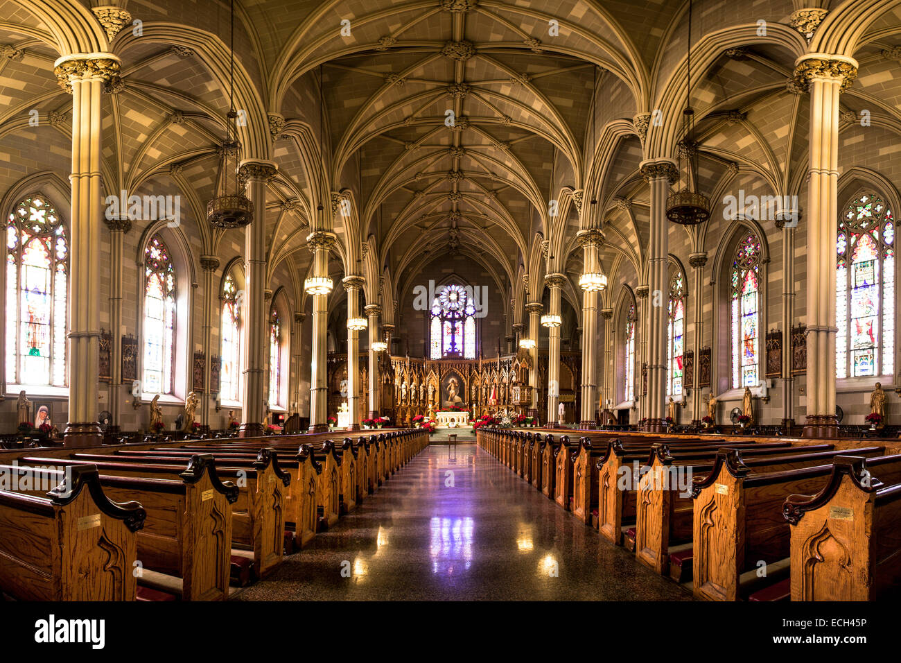Saint Patrick S Old Cathedral Or Old St Patrick S Lower