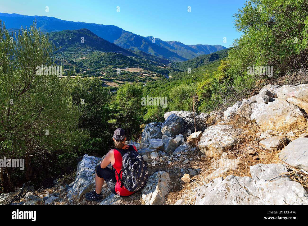 Tourist on a hike along an old charburner's path, Gennargentu National Park, Supramonte, Province of Nuoro, - Stock Image