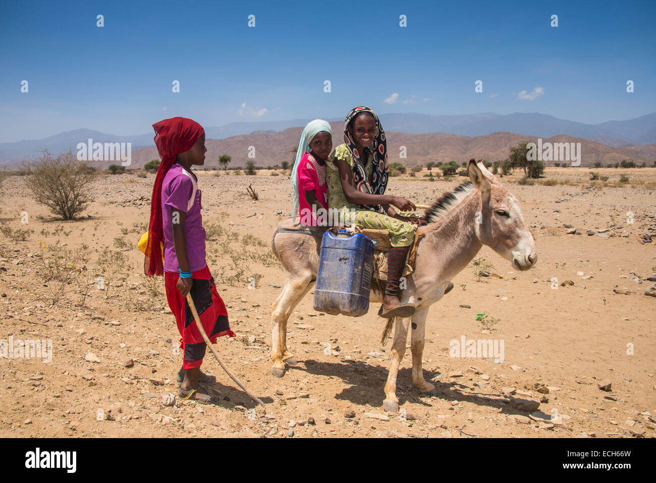 Children with a donkey on the way to a waterhole, in the lowlands, Eritrea Stock Photo
