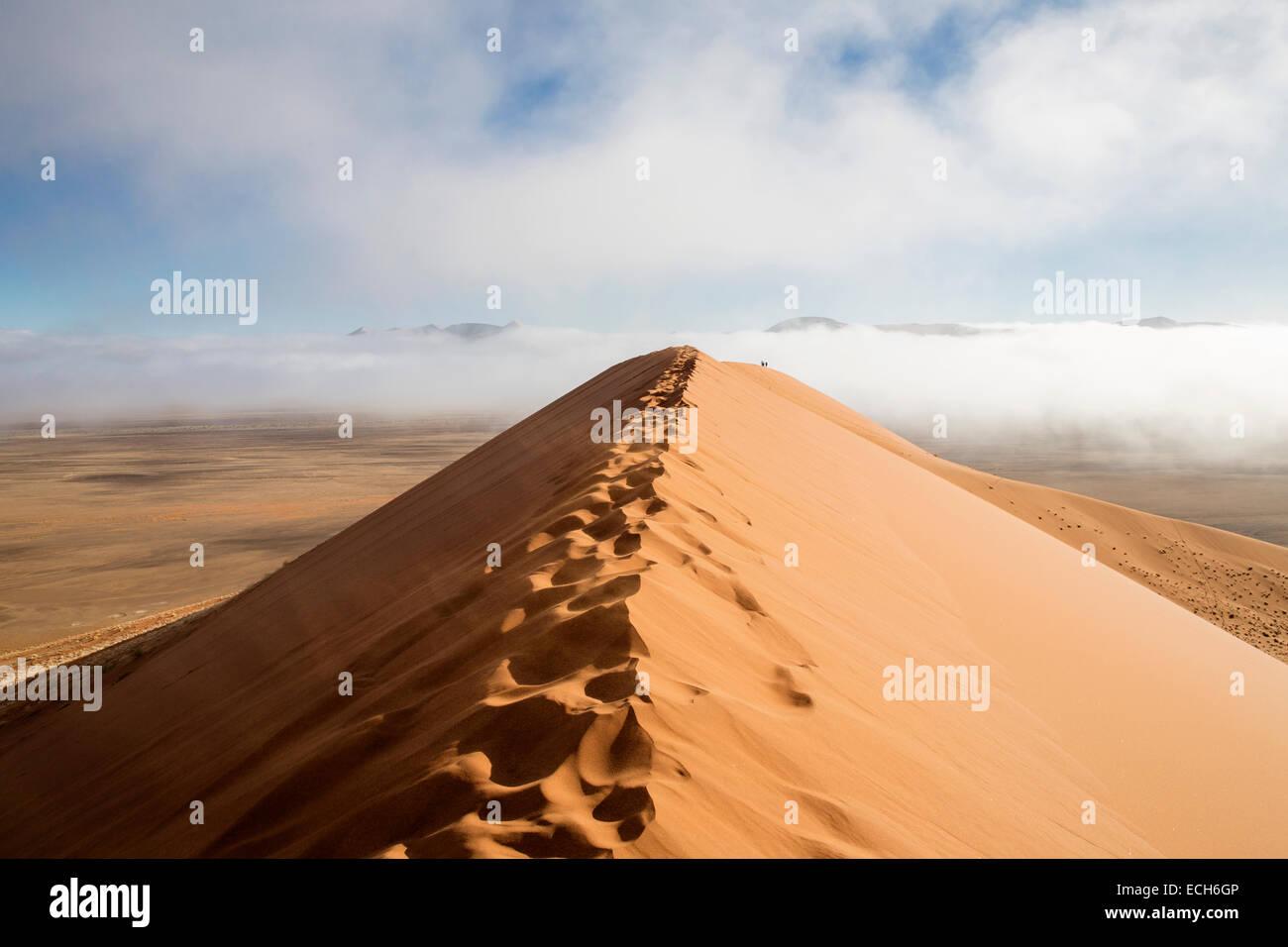 Dune 45 with morning fog, sand dunes, Sossusvlei, Namib Desert, Namibia Stock Photo