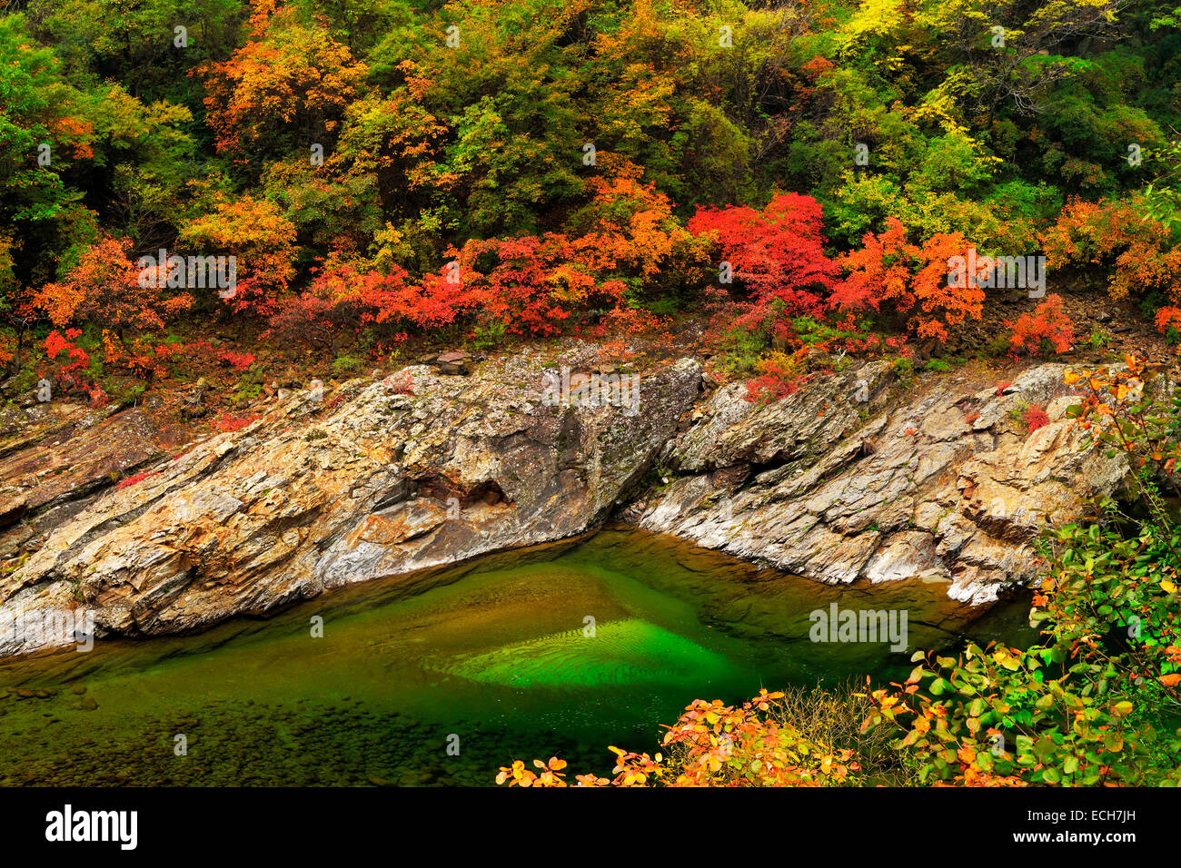 Black River in autumn landscape, Heihe National Park, Qinling Mountain, Shaanxi Province, China - Stock Image