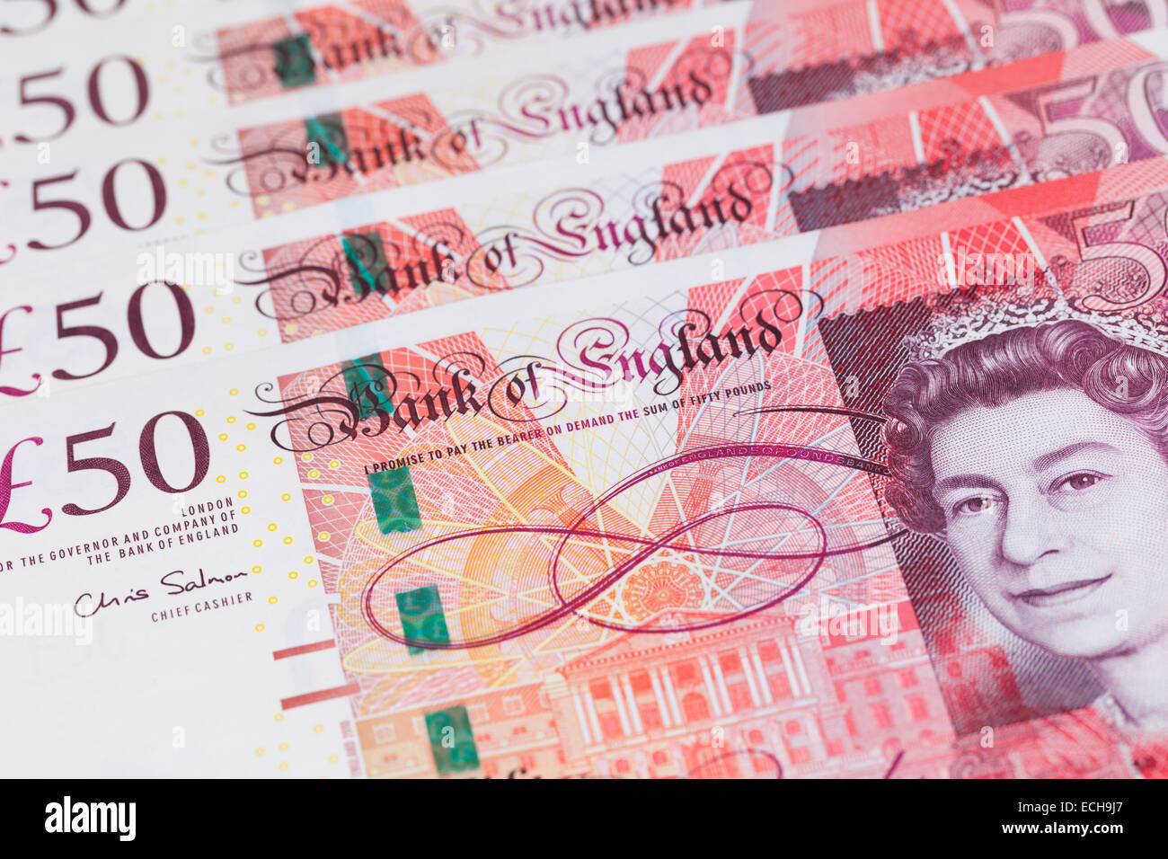 British fifty pound notes - Stock Image