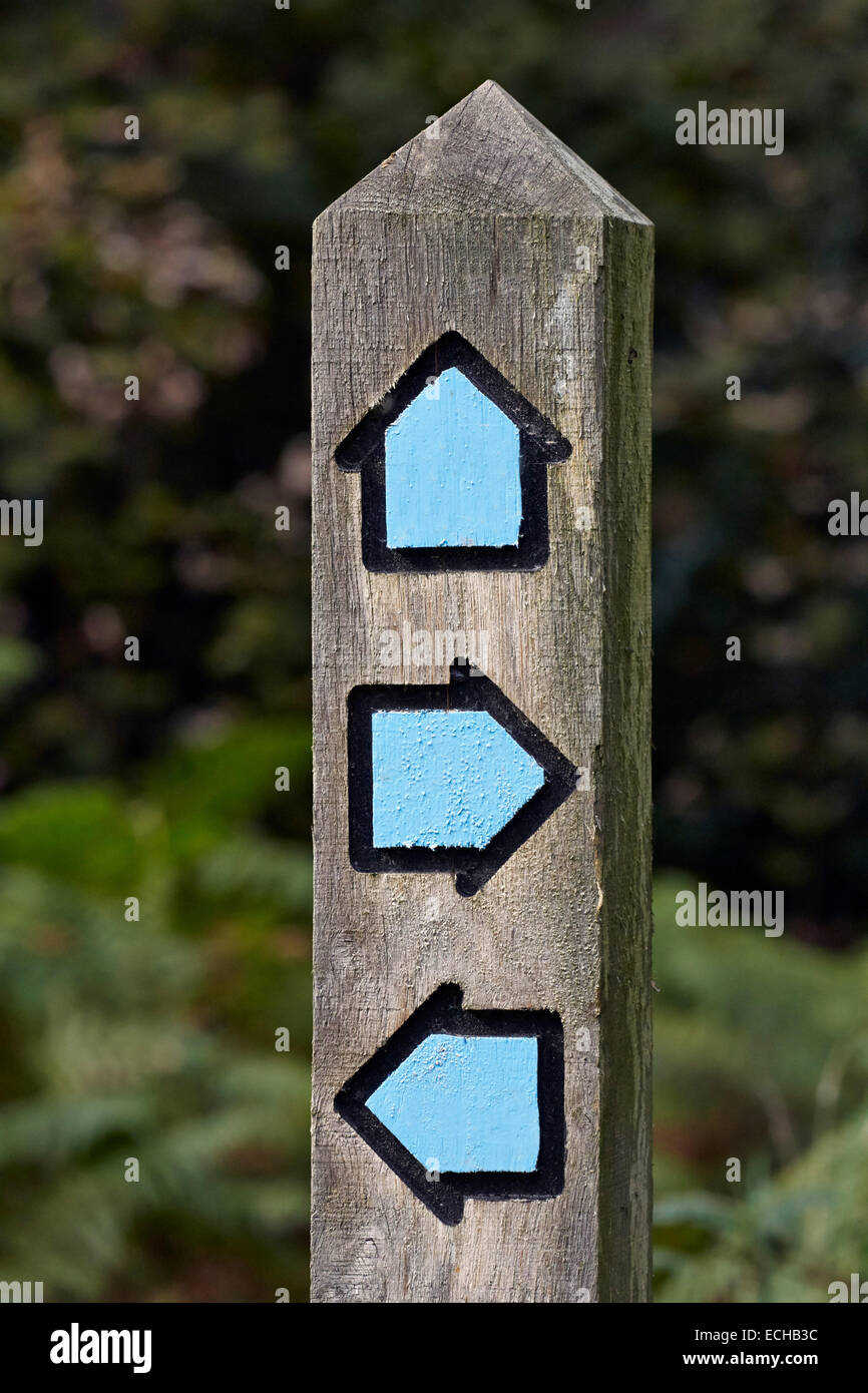 Bridleway direction post. Bookham Common, Surrey, England. - Stock Image