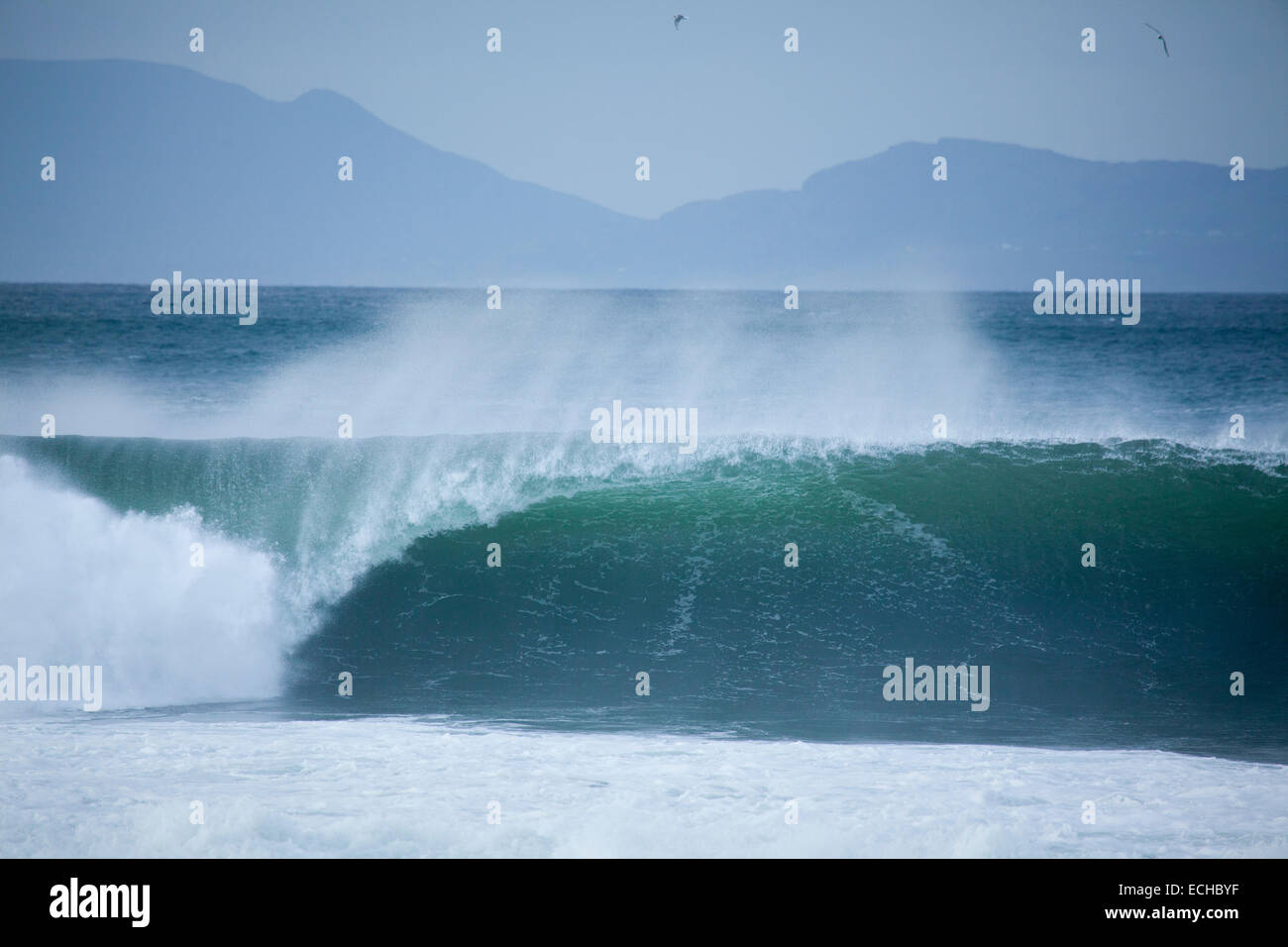 Wave breaking at a surf spot in Bundoran, Donegal Bay, County Donegal, Ireland. - Stock Image