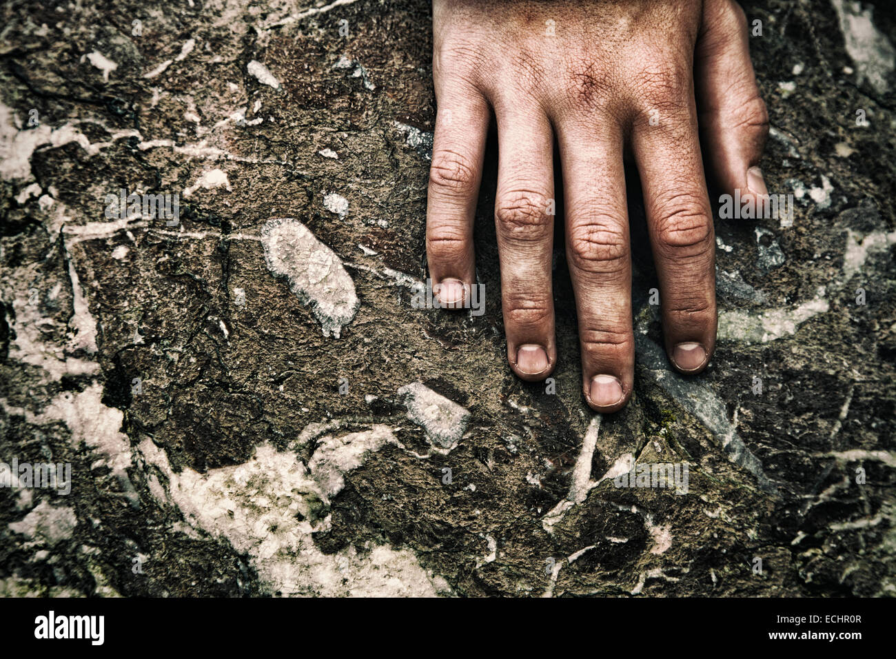 Single hand on craggy rock - Stock Image