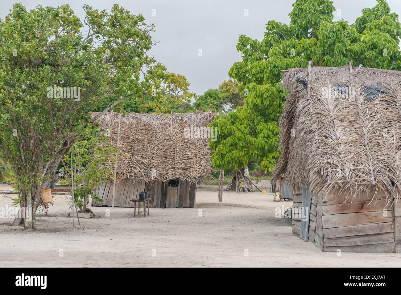 Traditional wooden huts with palm roof in the Amerindian village of Christiaankondre, Galibi, Suriname - Stock Image
