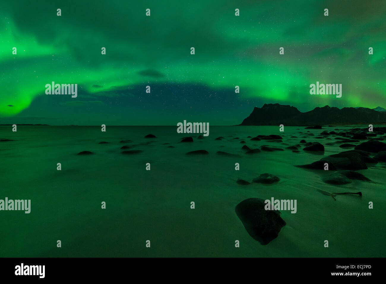 Northern Lights - Aurora Borealis shine in Sky over Uttakleiv beach, Vestvågøy, Lofoten Islands, Norway - Stock Image
