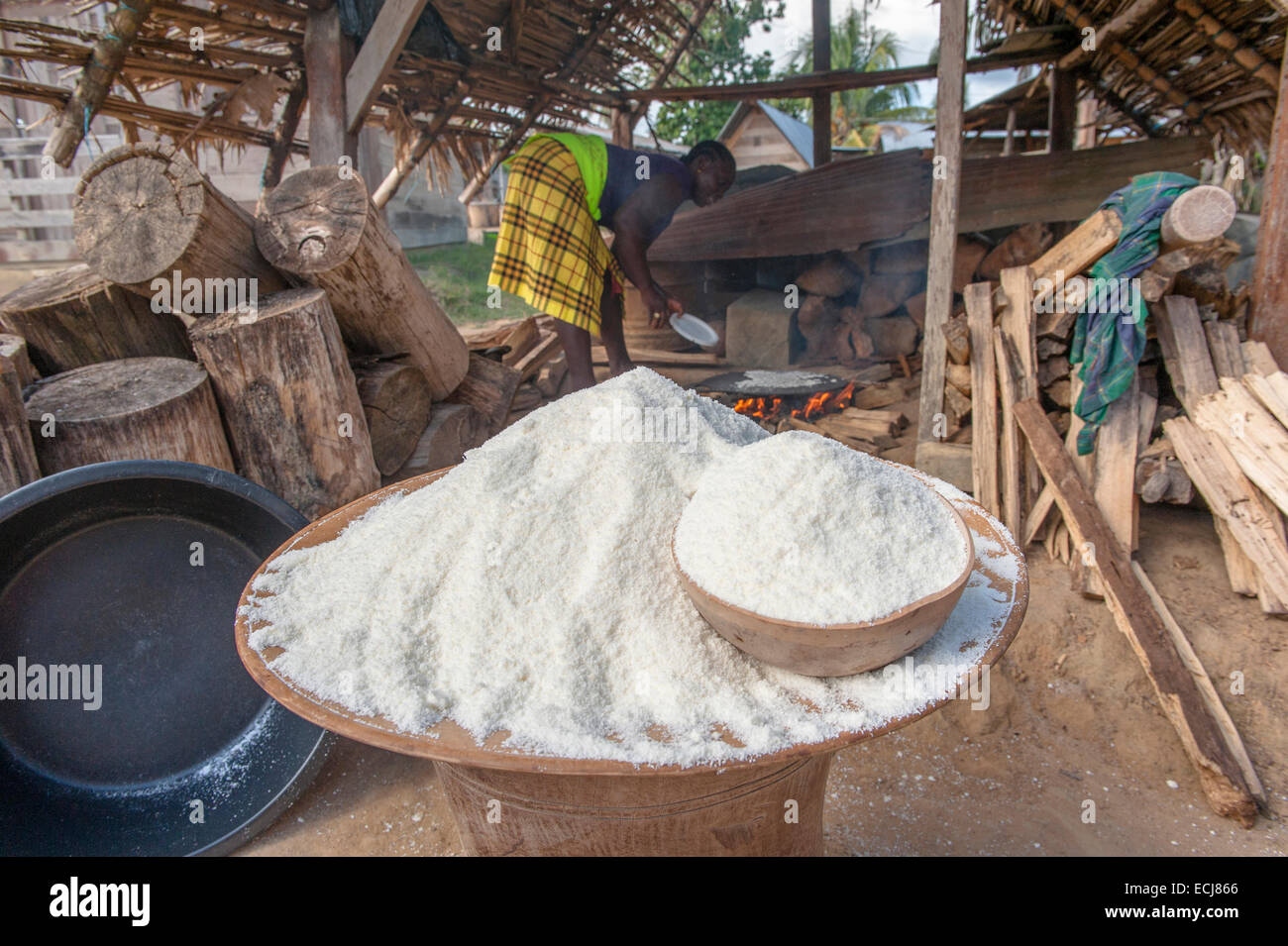 Preparation of Cassava bread, a traditional food of the indigenous and Maroon people of Suriname - Stock Image