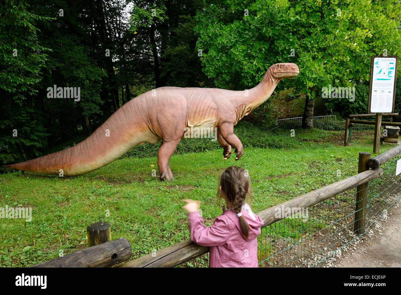 France, Doubs, Charbonnieres les Sapins, Dino Zoo prehistoric park, Plateosaurus - Stock Image