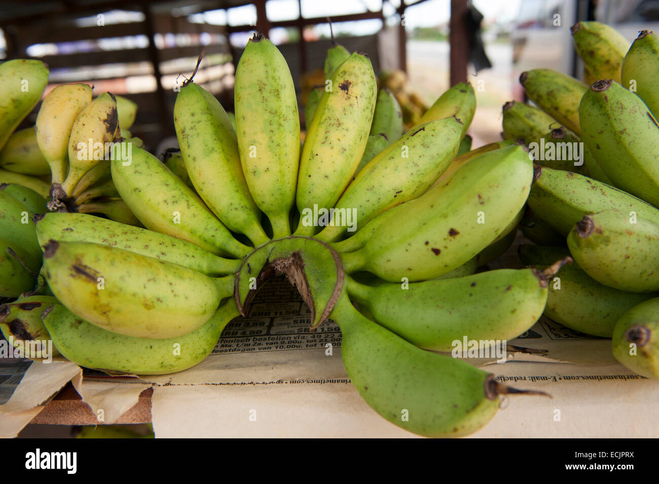 Bananas for sales at a roadside store in Tamanredjo, Suriname - Stock Image