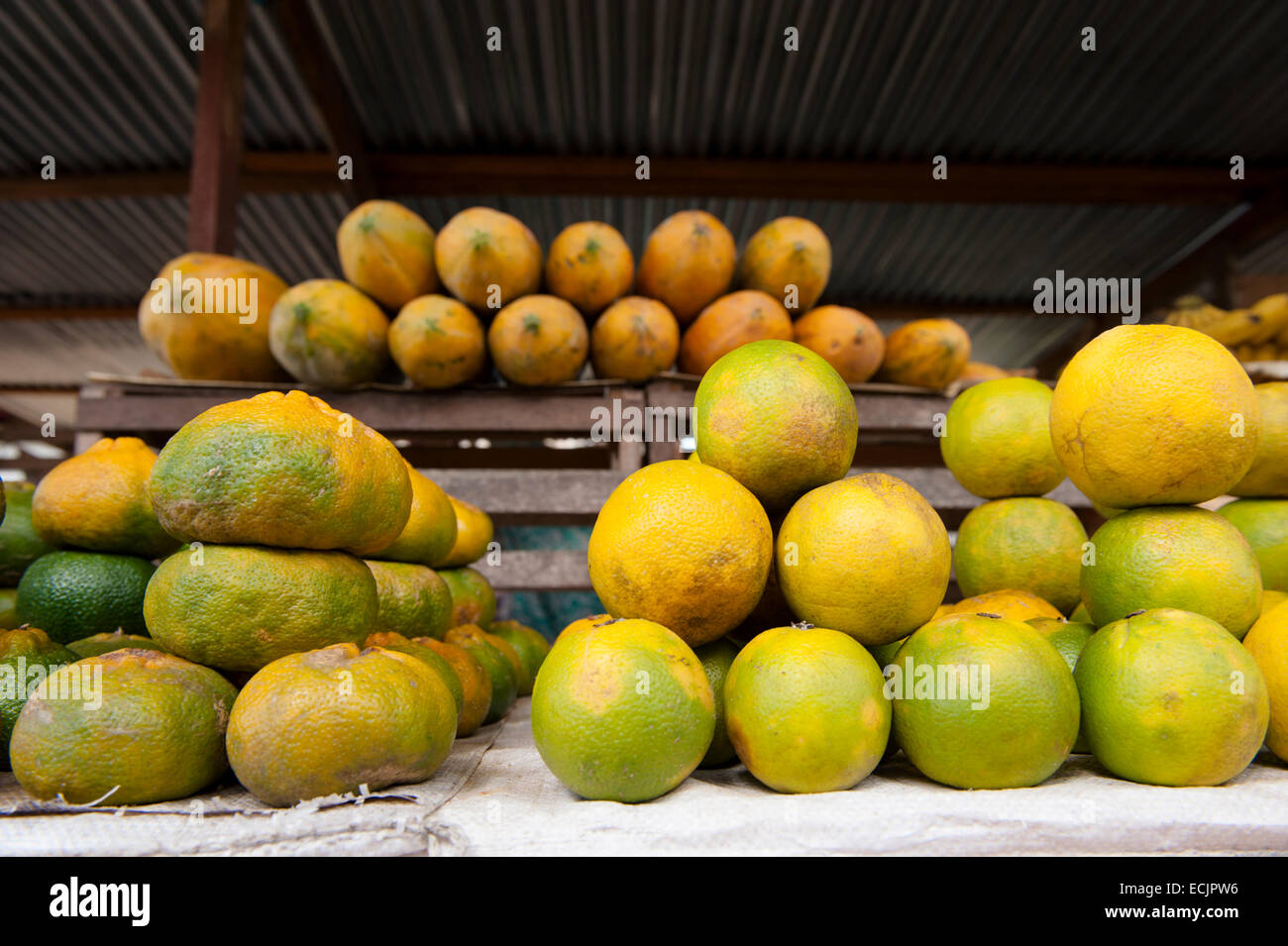 Many different kind of citrus fruit are being cultivated in Suriname next to Papaya and Mango - Stock Image