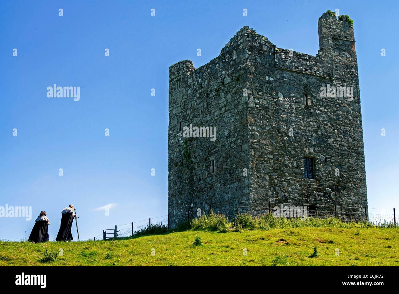 United Kingdom, Northern Ireland, County Down, Strangford, Audley's Castle, Audley's field, a backdrop for - Stock Image