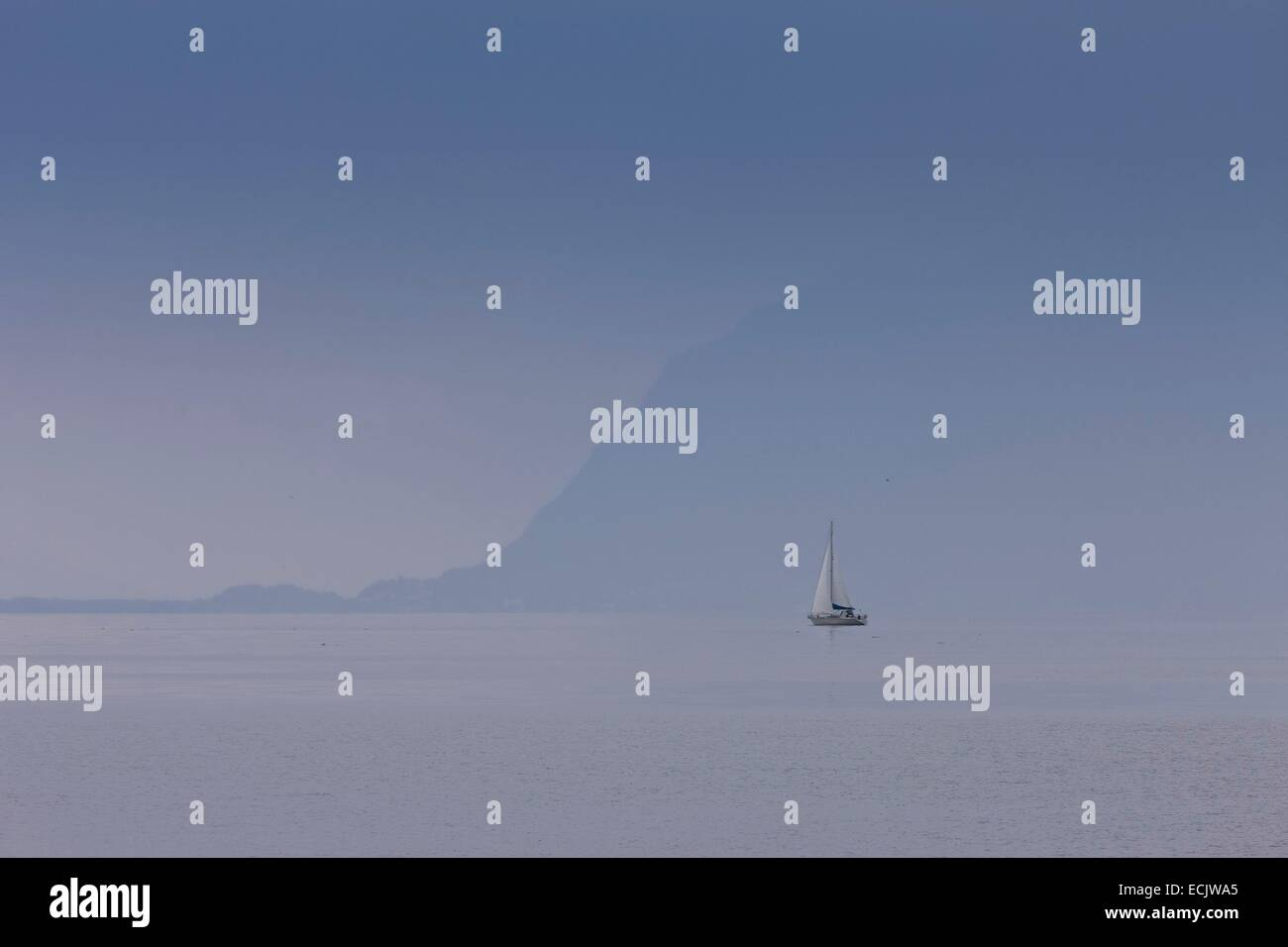 Switzerland, Canton of Vaud, sailing on lake Leman - Stock Image
