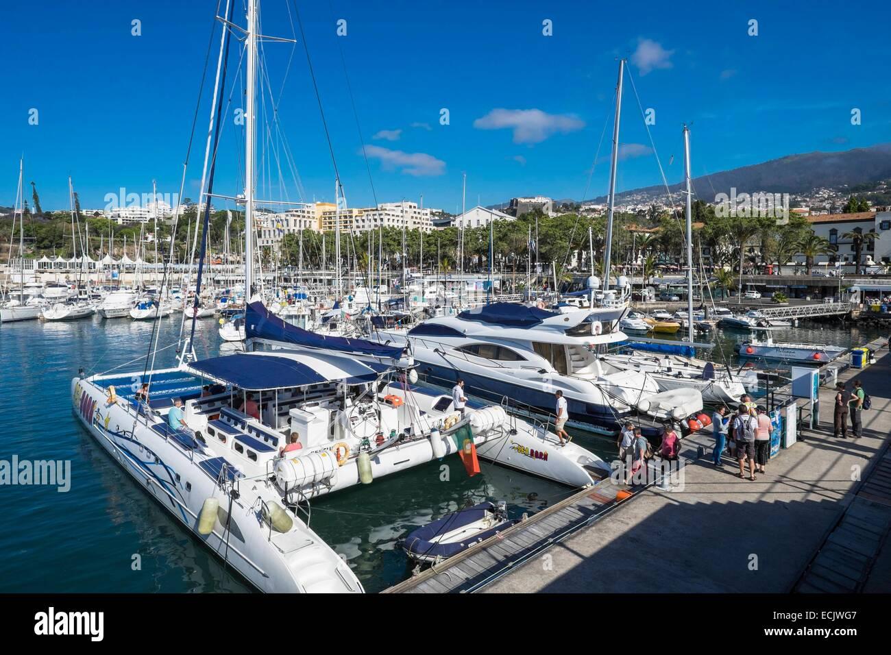 Portugal, Madeira island, Funchal, the marina - Stock Image