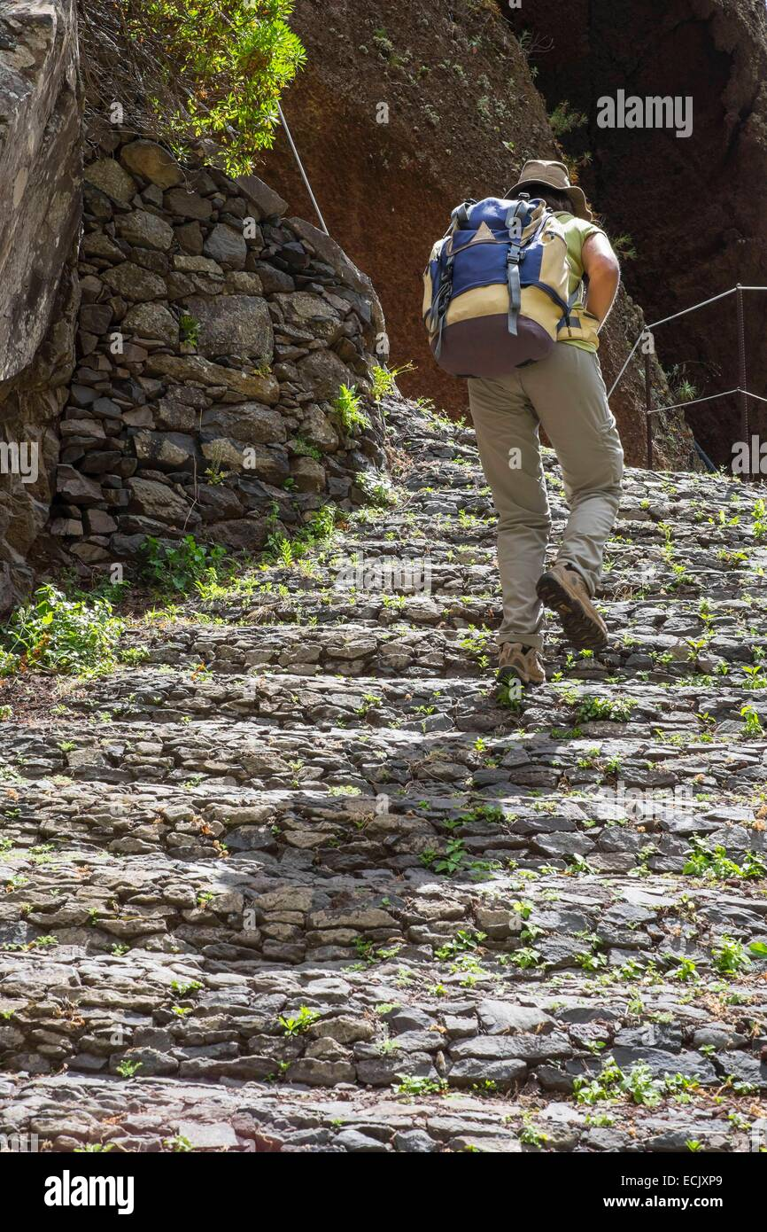 Portugal, Madeira island, hike from Prazeres to Paul do Mar along the Caminho Real, an old paved path - Stock Image