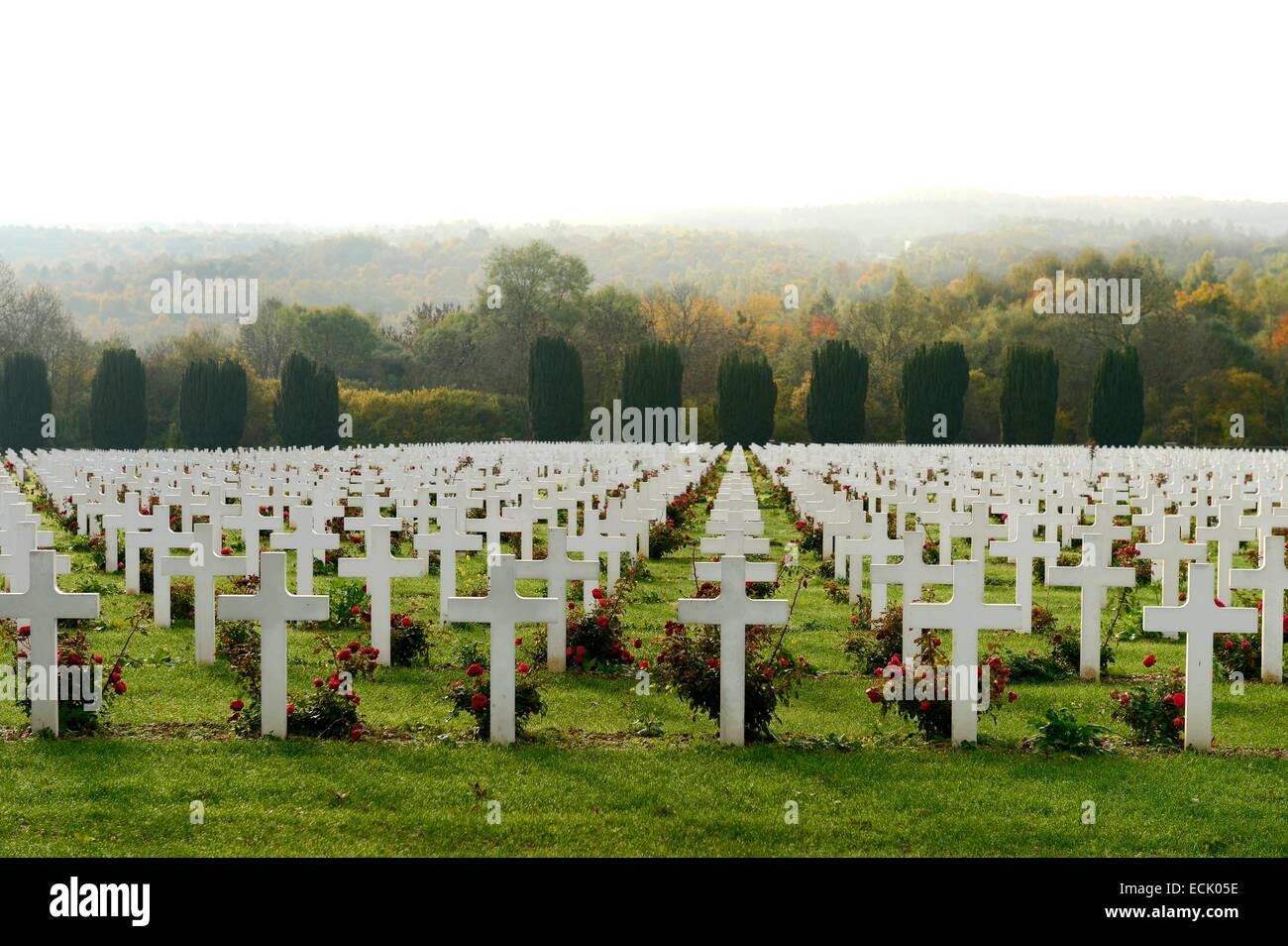 France, Meuse, Douaumont, battle of Verdun, ossuary of Douaumont, national necropolis - Stock Image