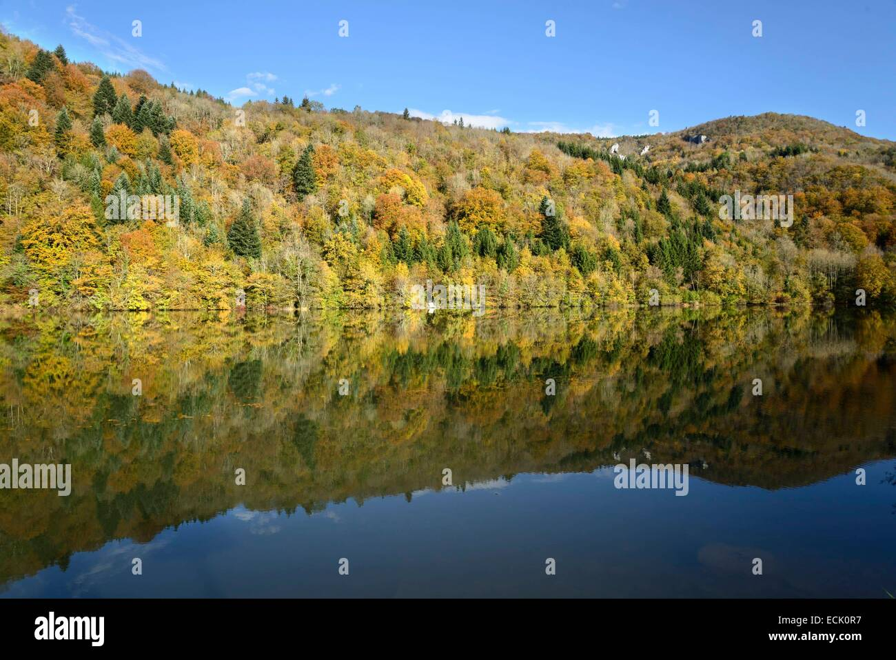 France, Doubs, Vaufrey, Doubs valley, reflecting the autumn forest in the basin of the Doubs - Stock Image