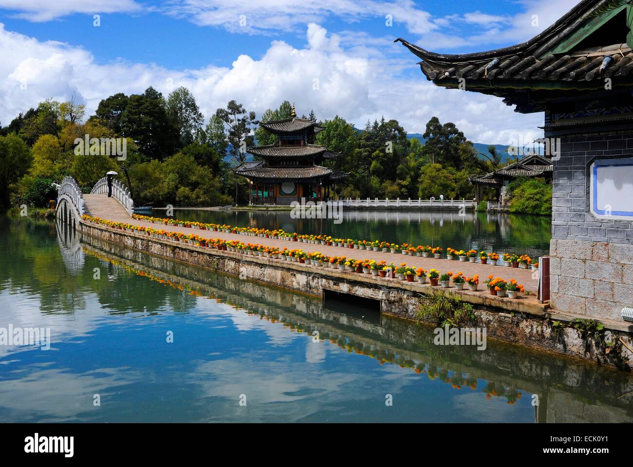 China, Yunnan Province, Lijiang, Black dragon's park - Stock Image