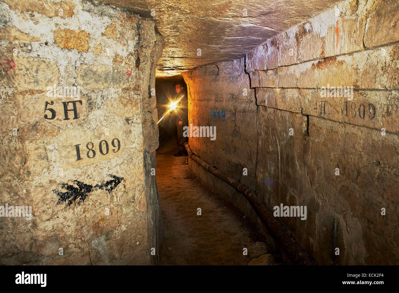 France, Paris, National Museum of Natural History, Catacombs - Stock Image