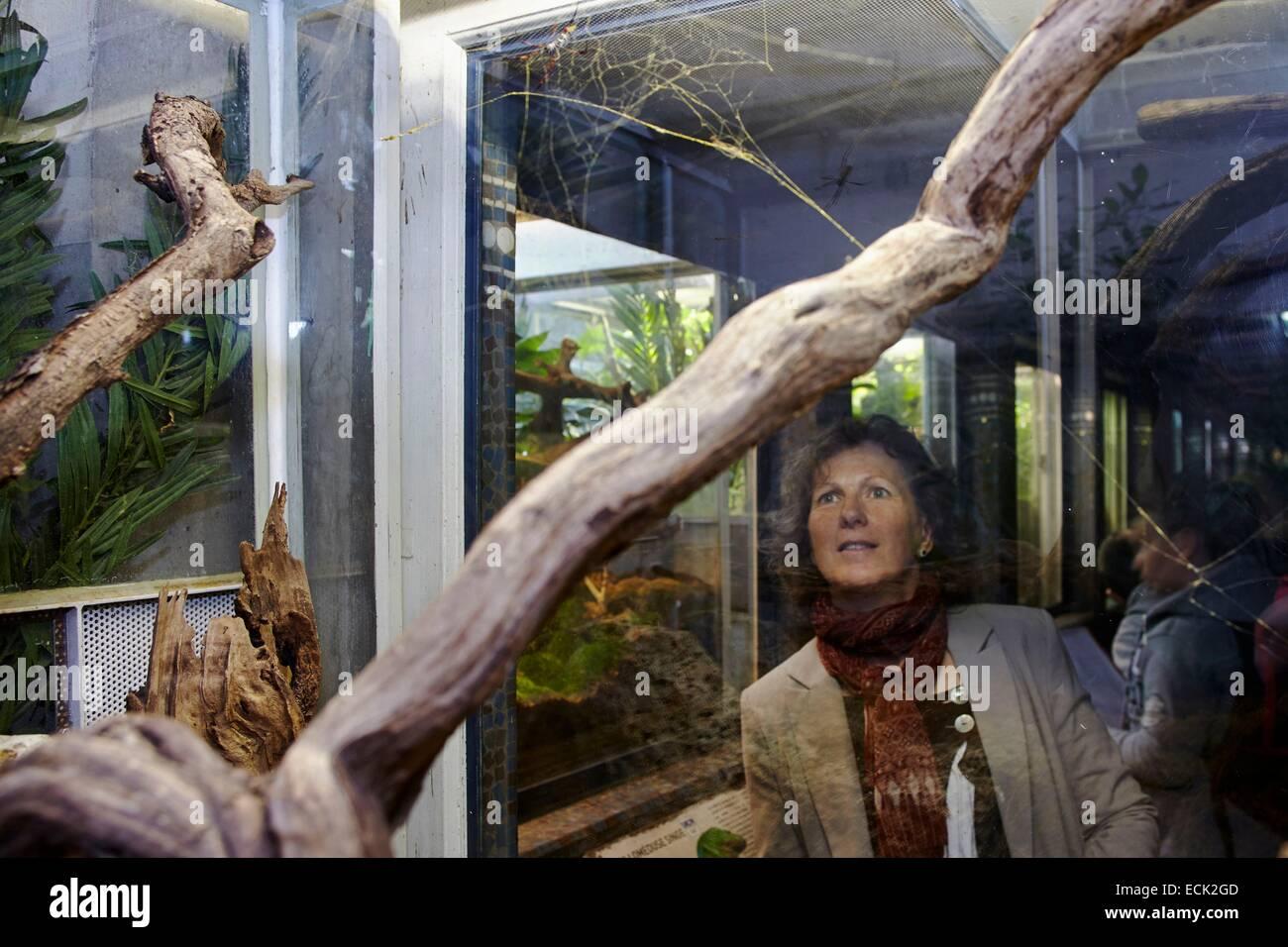 France, Paris, National Museum of Natural History, Botanical Gardens, Christine Rollard, araneologist, watching - Stock Image