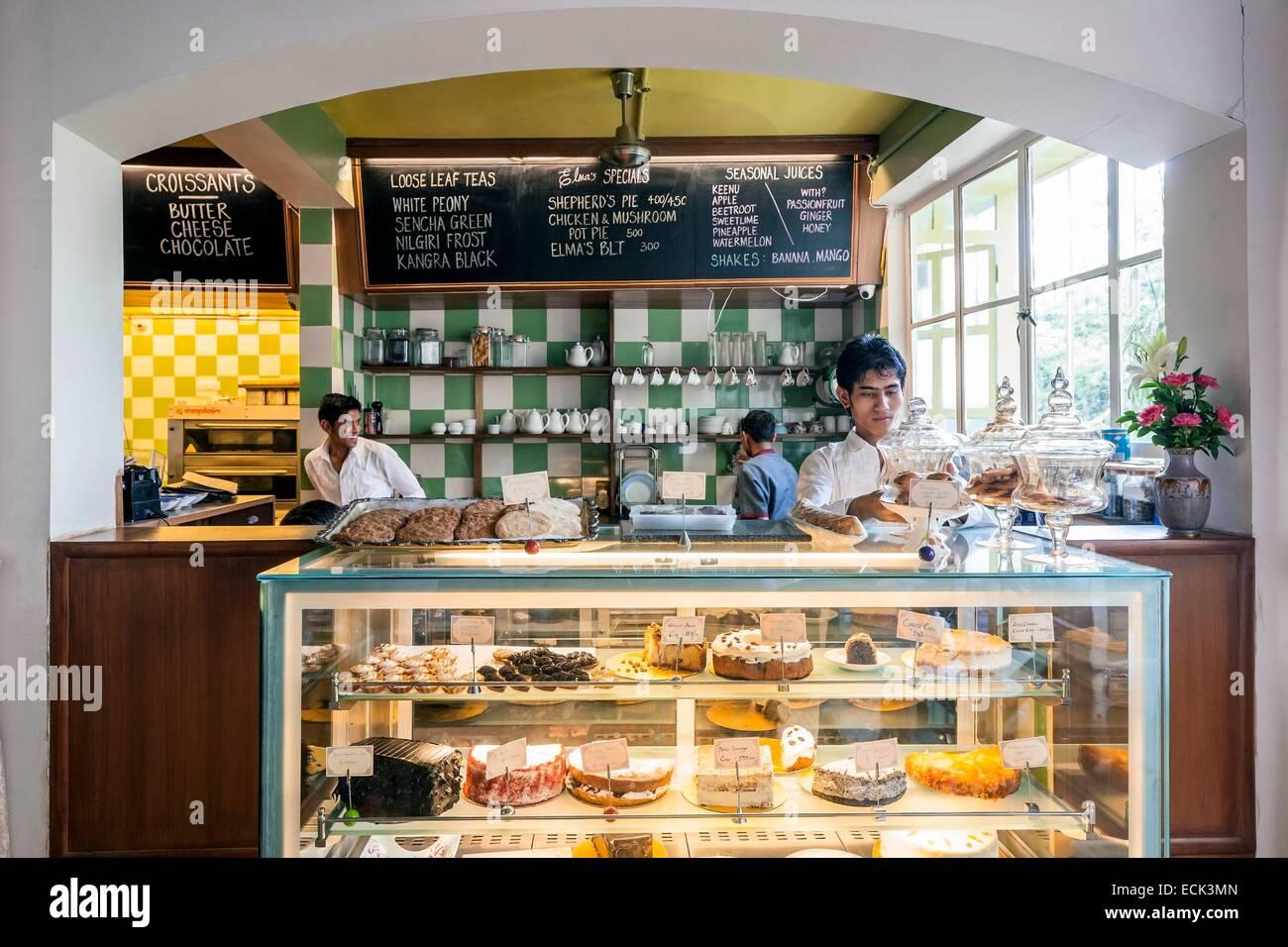 India, New Delhi, Hauz Khas Village, Elma's Tea Room - Stock Image