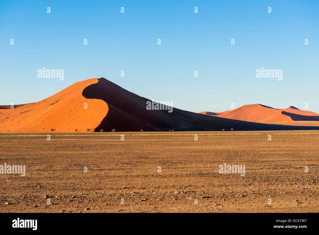 Namibia, Hardap region, Namib desert, Namib-Naukluft national park, Namib Sand Sea listed as World Heritage by UNESCO, - Stock Image