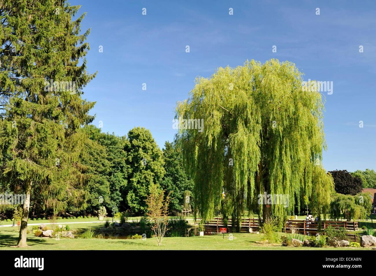 France, Pas de Calais, Lievin, Public Garden - Stock Image