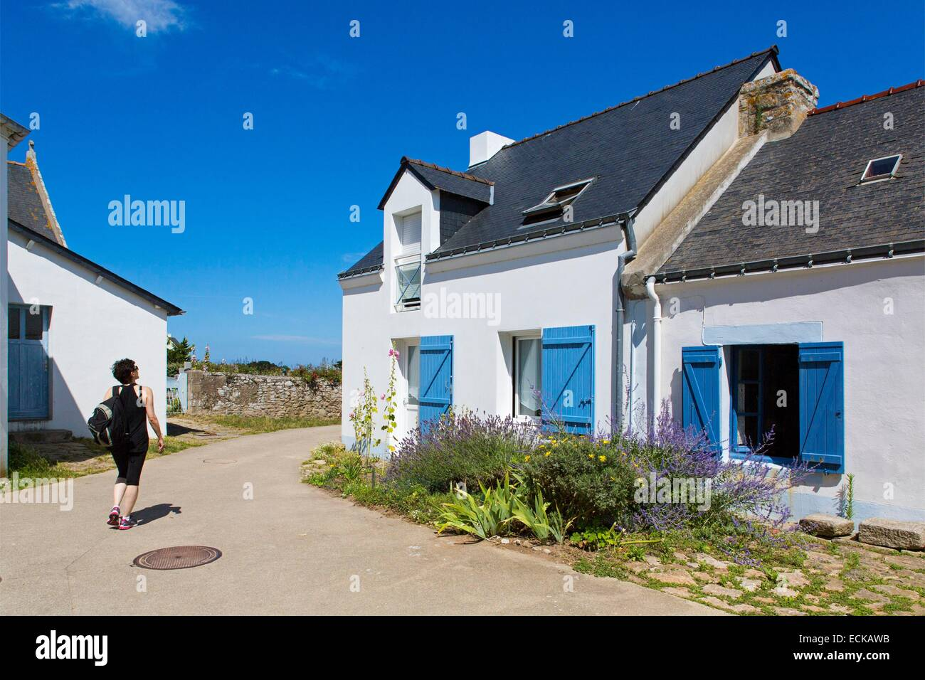 France, Morbihan, the Gulf of Morbihan, the Ponant islands, the island of Houat, the village - Stock Image
