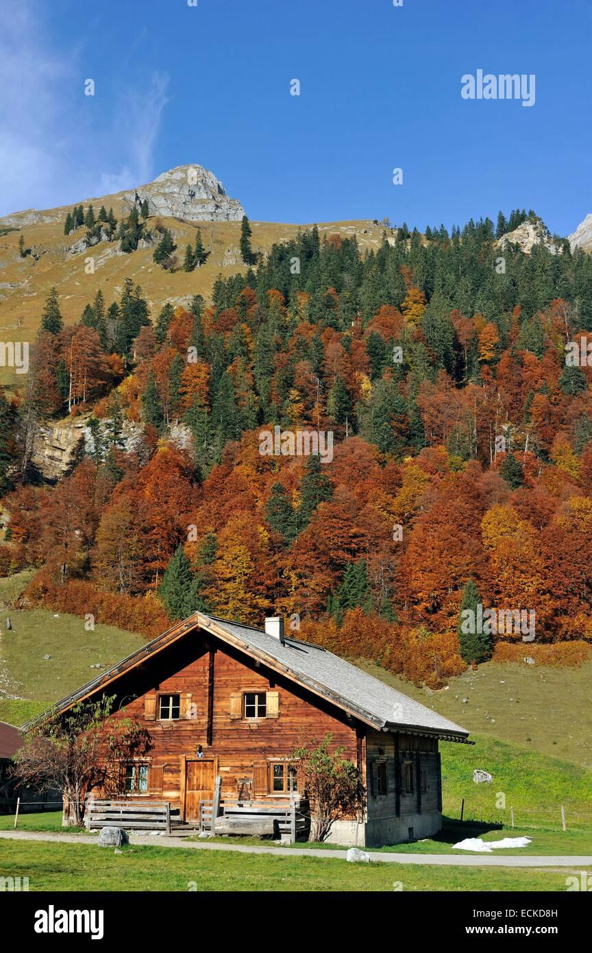 Austria, Tyrol, Karwendel, Grosser Ahornboden, Eng Alm - Stock Image