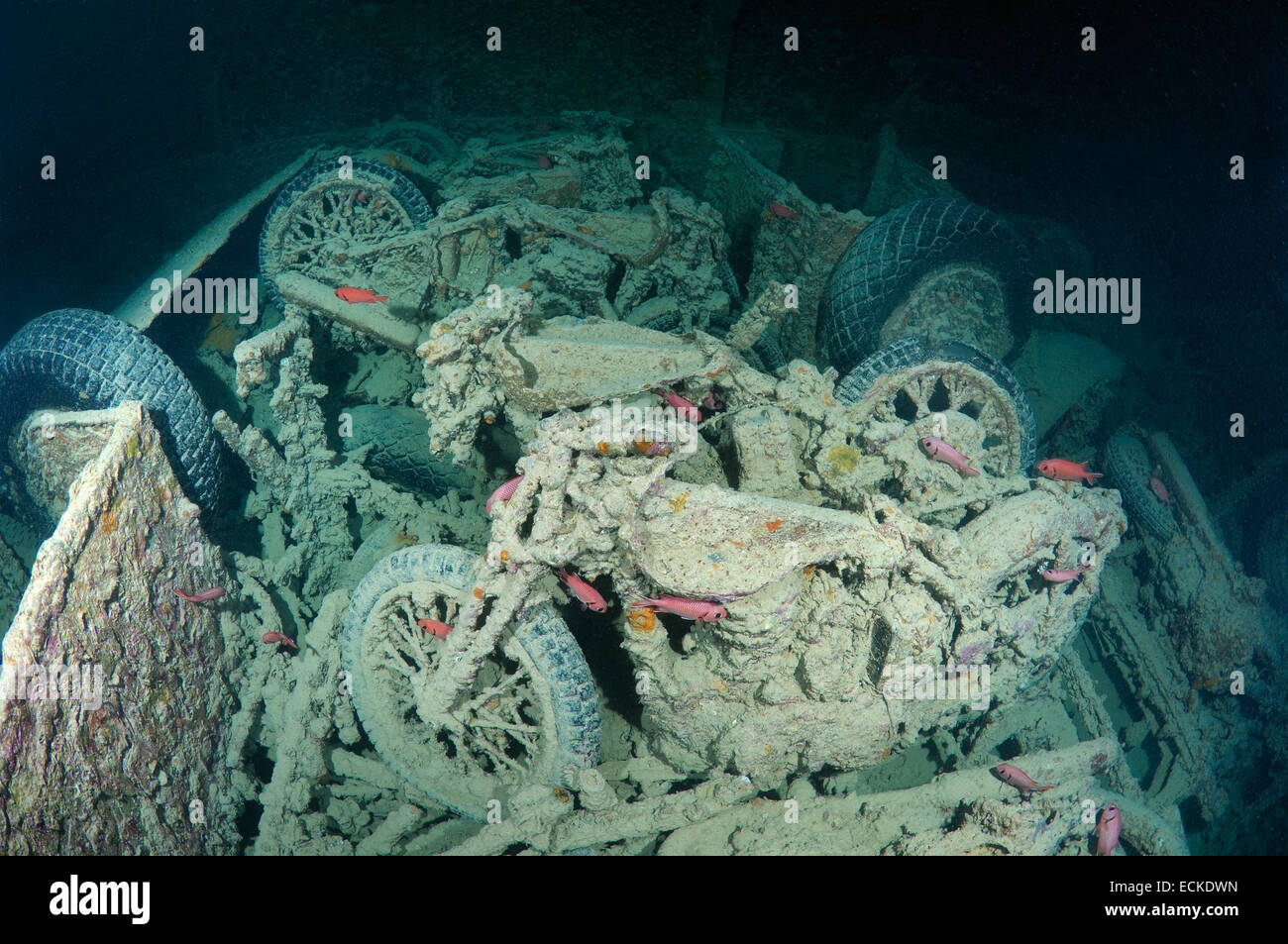 "Sell My Motorcycle >> motorcycle ""Norton 16H"" on shipwreck SS Thistlegorm (British armed Stock Photo: 76645345 - Alamy"