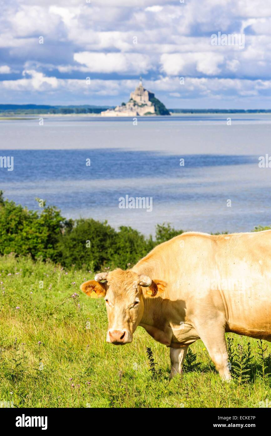 France, Manche, Mont Saint Michel bay, listed as World Heritage by UNESCO, Mont Saint Michel abbey perched on a - Stock Image