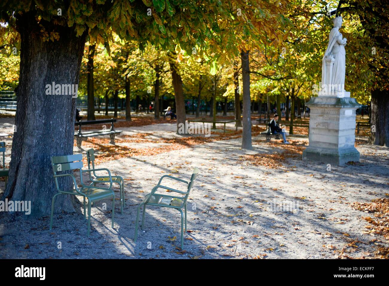 france paris luxembourg garden chairs under an oak in autumn with