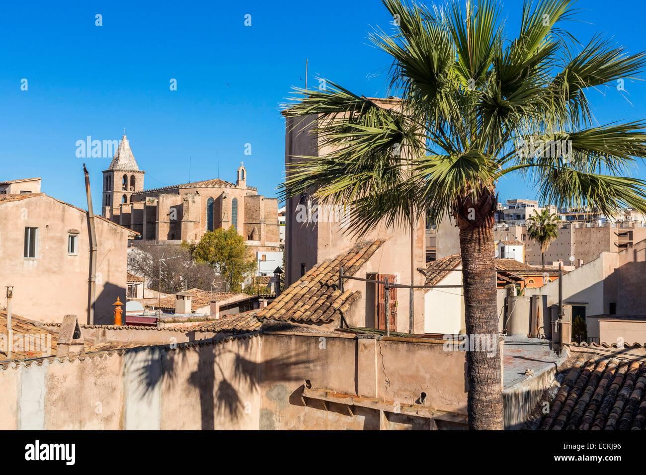 Puro Hotel Palma Mallorca Spain