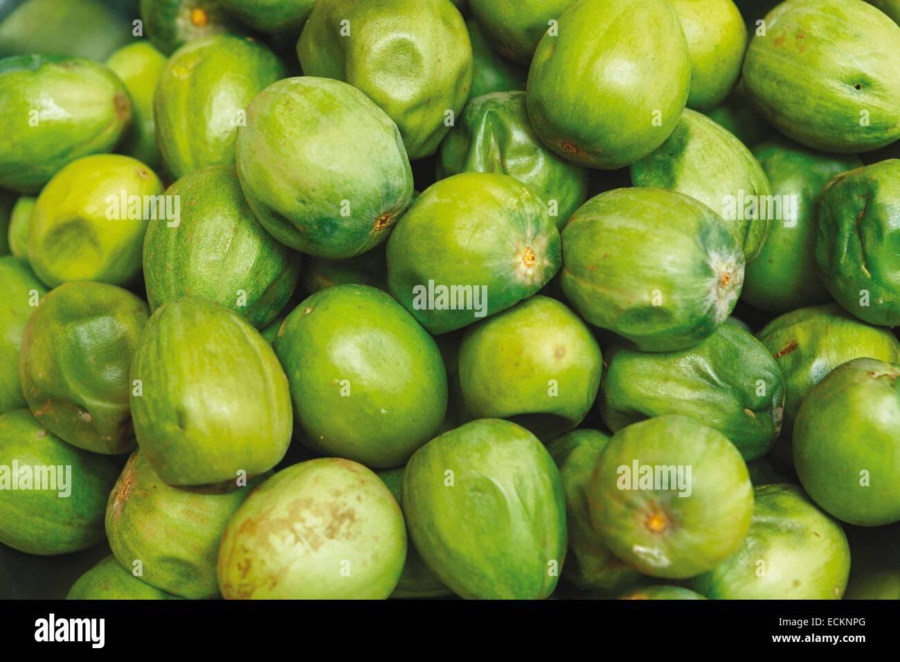 Burkina Faso, Bobo Dioulasso, Toussiana, women's cooperative, shea fruit Stock Photo