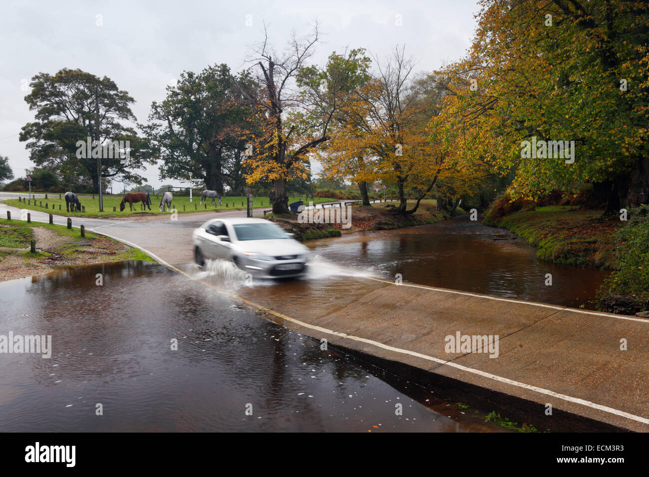 Car crossing Docken's Water Ford. New Forest National Park. Hampshire. UK. - Stock Image