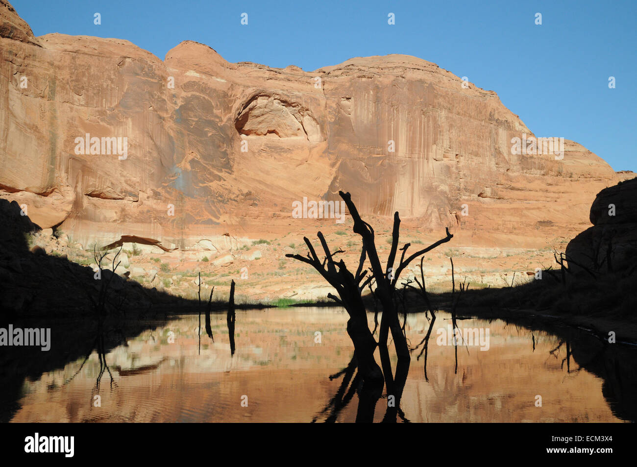 A low afternoon sun casts a shadow over the far end of Forgotten Canyon, Lake Powell, silhouetting previously submerged - Stock Image
