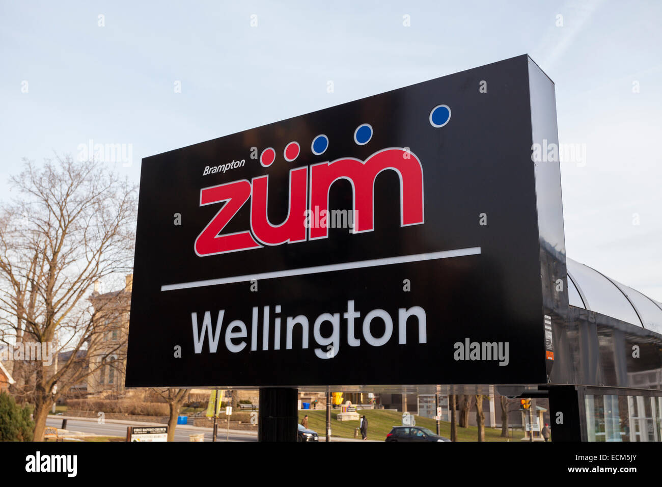 A sign for a Züm rapid transit bus stop in downtown Brampton, Ontario, Canada. - Stock Image