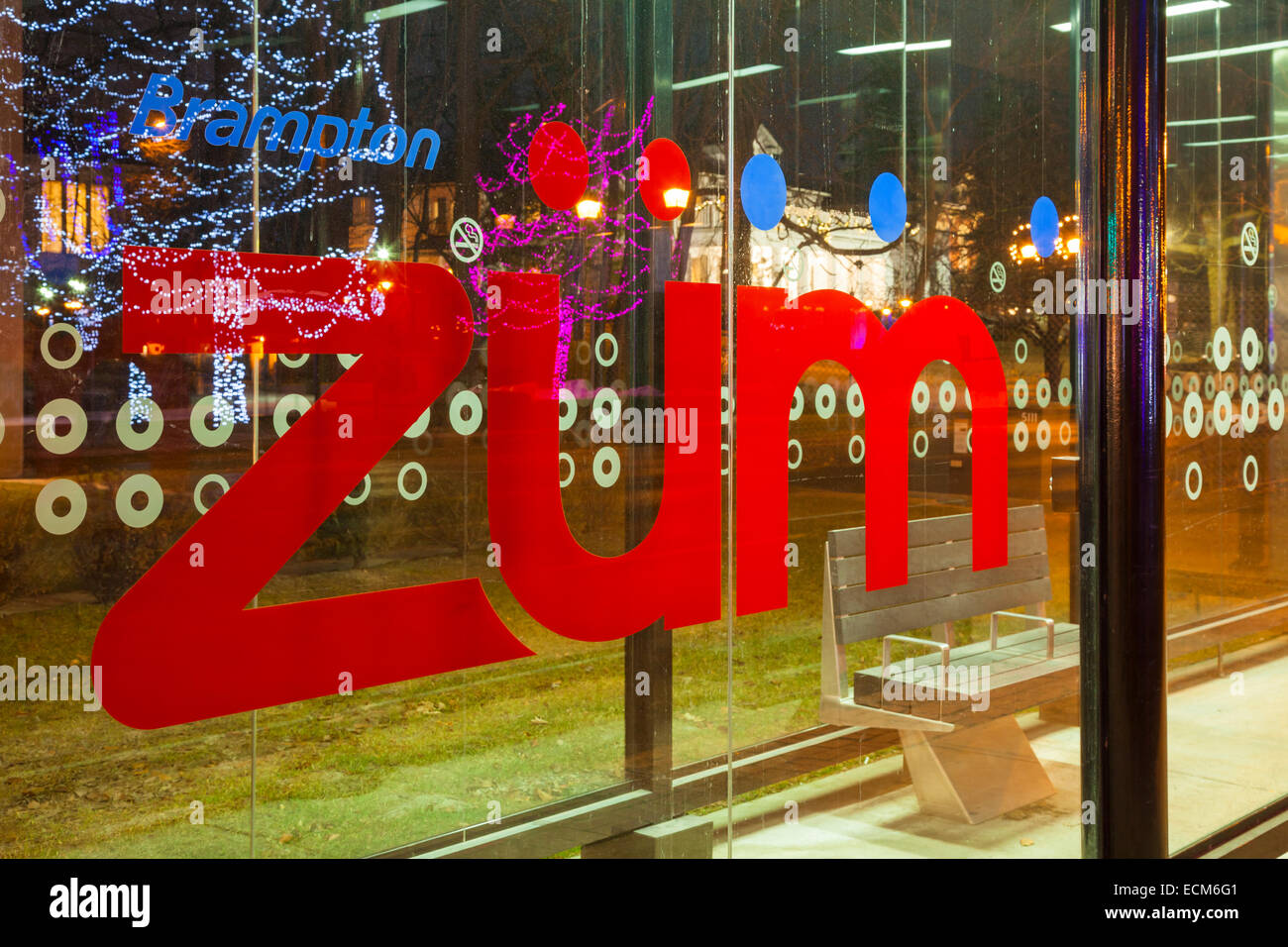 The Züm rapid transit logo with Christmas Lights reflected in the glass. Downtown Brampton, Ontario, Canada. - Stock Image