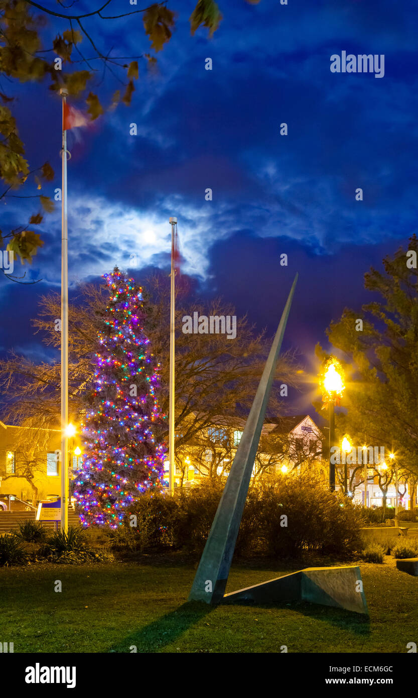 A very large Christmas Tree (Blue Spruce) covered in lights with an art sculpture in the foreground. Oakville, Ontario, - Stock Image