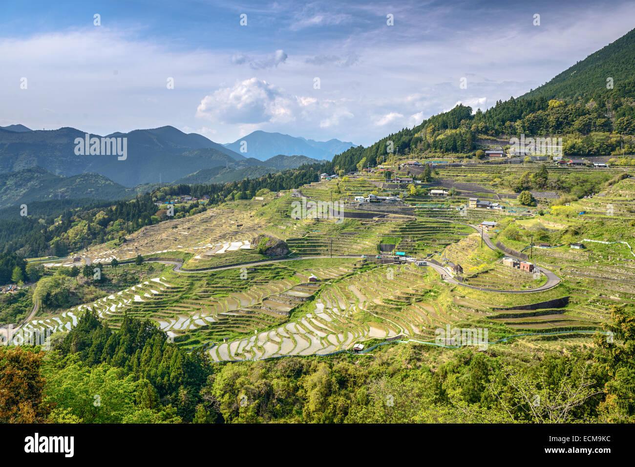 Rice terraces at Maruyama Senmaida in Kumano, Mie Prefecture, Japan. - Stock Image