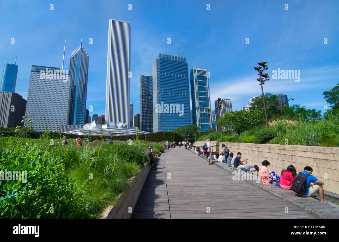Chicago Illinois Millennium Park in Lurie Gardens with skyline in background skyscrapers in downtown Midwest city - Stock Image