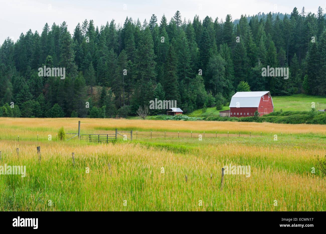 Coeur d' Alene Idaho farm with red barn in peaceful setting of farming - Stock Image