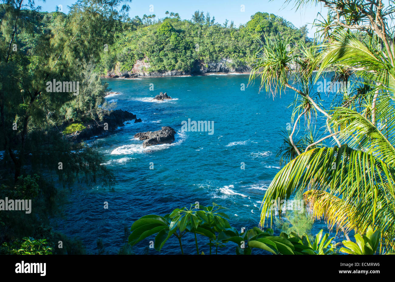 Hilo Hawaii Big Island outlook at Onomea Bay in Onomea Falls  green peaceful from above with sea and waves - Stock Image