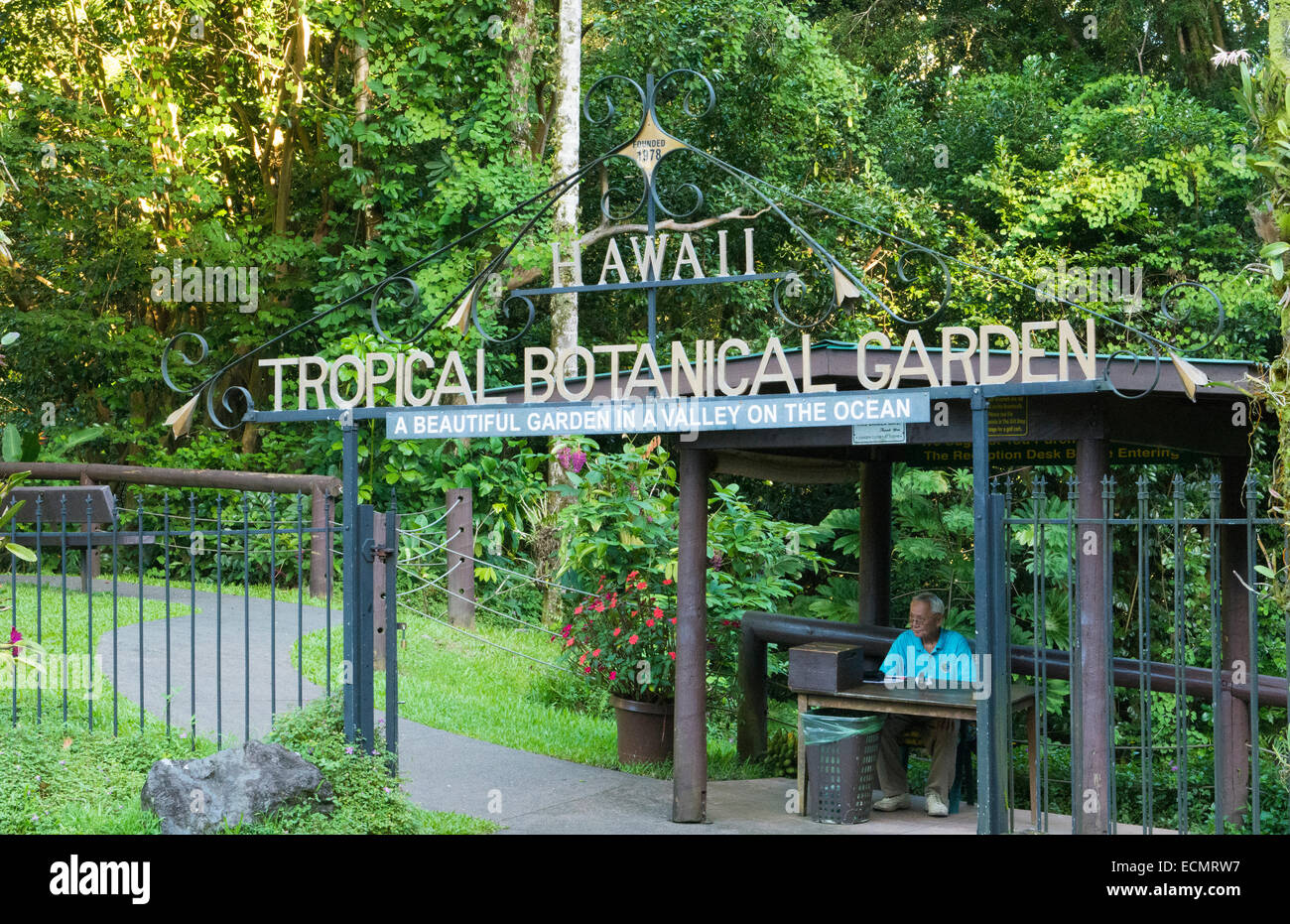Hilo Hawaii Big Island Hawaii Tropical Botanical Garden  green peaceful from above with sea and waves entrance - Stock Image