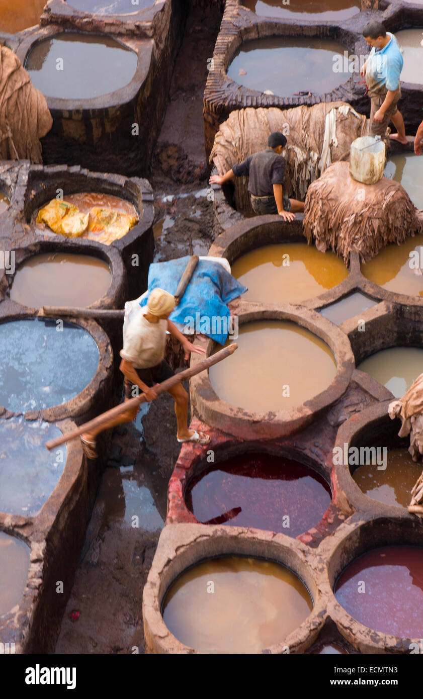 Fez Morocco old Tannery called Chouara Tannery which is almost 1000