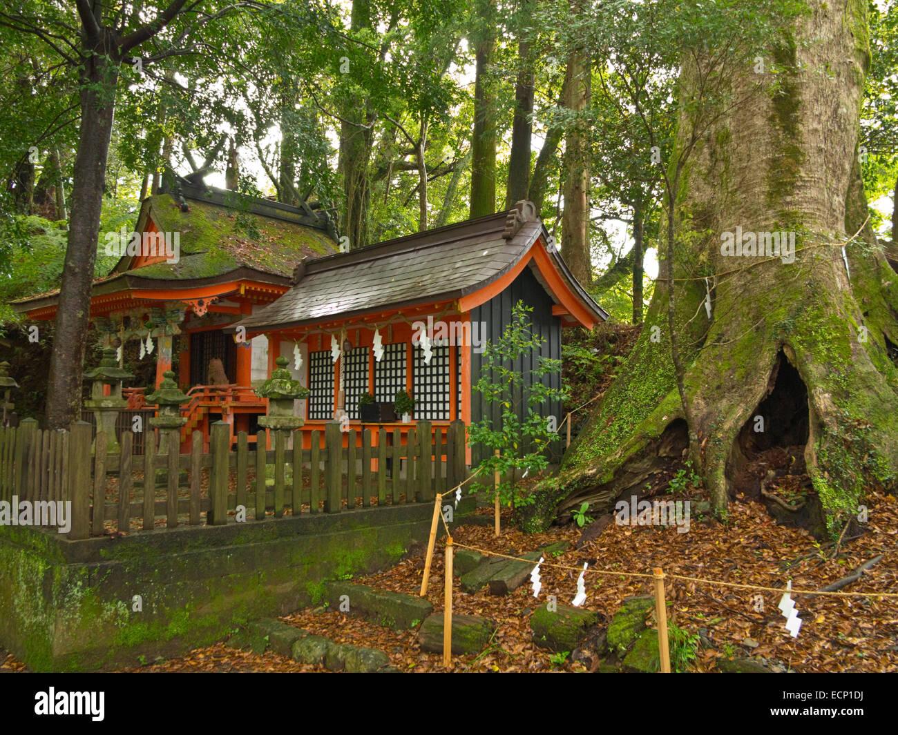 Takahara Kumano-jinja shrine at village of Takahara on Kumano Kodo Pilgrimage Route, Kii Peninsula, Wakayama Prefecture, - Stock Image